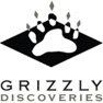 Grizzly Discoveries Inc.